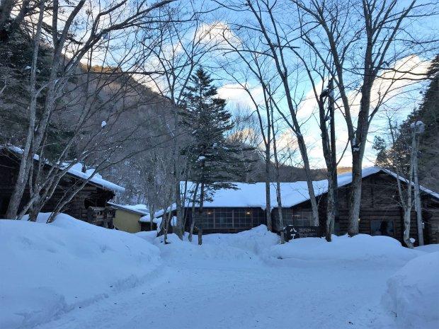 今年は今のところ例年より雪がやや少ないです。